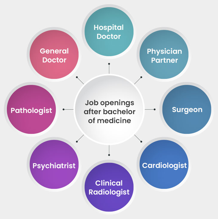 Job openings after bachelor of medicine