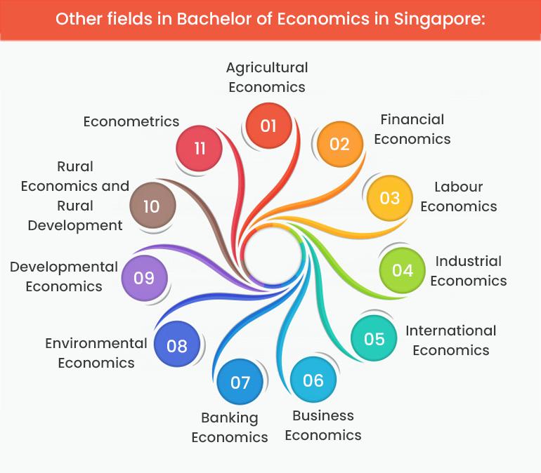 Bachelor of Economics