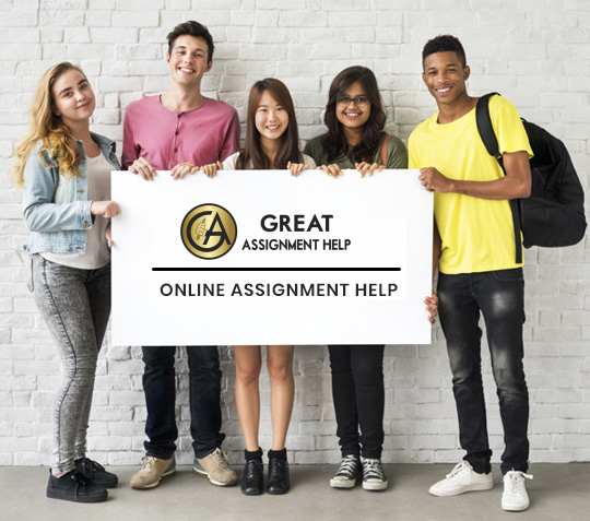 assignment solution help